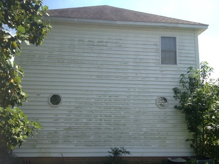 A before picture of a home with severe mildew, algae, mold growing on the siding.  We will soft wash this house