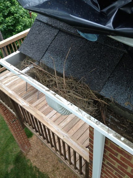 Marc's on the Glass gutter cleaning in chesterfield va