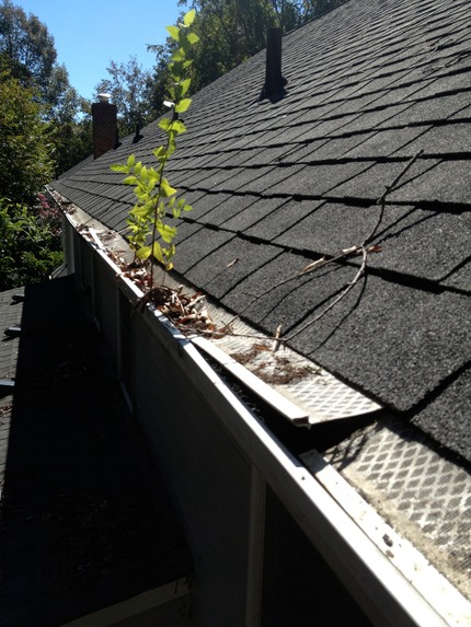 Gutter Guards Marc S On The Glass 804 380 6601